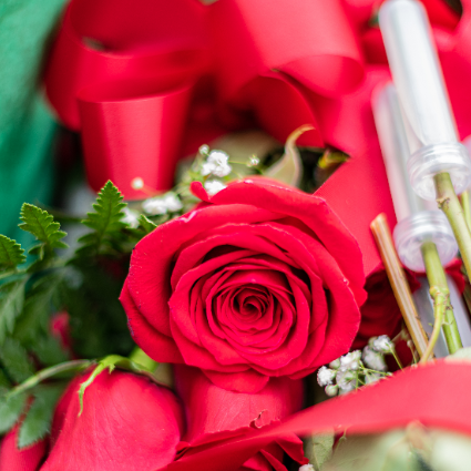 Graduation Roses
